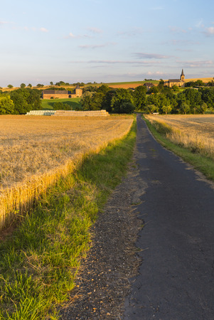 towards: A country road leading through golden fields towards a village in the Eifel, Germany.