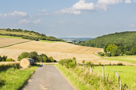 A road leading into golden rye fields in beautiful light on hills in northern Eifel landscape in Germany with some wind turbines in the background.