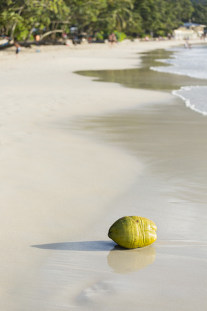 beau: A fresh green coconut on the beach at Beau Vallon in Mahe, Seychelles with blurred people in the background Stock Photo