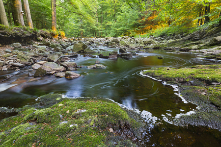 the ardennes: A small mountain stream in the High Fens, Ardennes, Belgium running between green moss covered rocks with warm evening light. Stock Photo