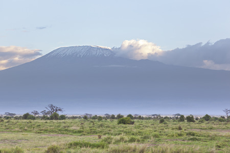 amboseli: Kilimanjaro with snow cap seen from Amboseli National Park in Kenya. Stock Photo