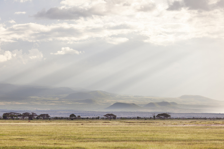 flank: Volcanic craters on the flank of Mount Kilimanjaro seen from Amboseli National Park in Kenya with beautiful evening light.