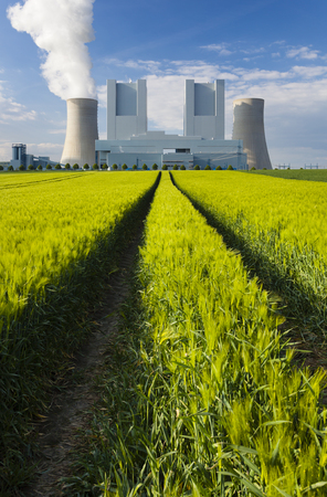 green power: A shiny new lignite power station behind a rye field with wheel tracks leading to it