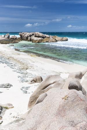 aux: A crab on a granite rock at Anse Aux Cedres, La Digue, Seychelles Stock Photo