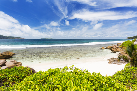 pristine coral reef: Anse Banane in La Digue, Seychelles with clear water and white sand