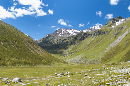 alpen: A beautiful valley in green mountain landscape in the Pitztal in Austria
