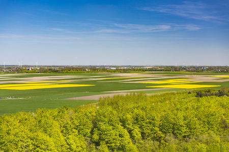 Aerial view over yellow rape fields to lots of wind turbines with a bit of forest in the foreground Stock Photo