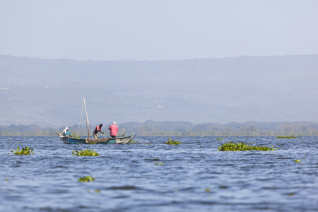 lake naivasha: Naivasha, Kenya - February 9: Local fishermen at Lake Naivasha, Kenya on February 9, 2013