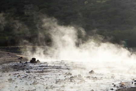 steaming: Steaming water of hot springs at Lake Bogoria in Kenya against the light. Stock Photo