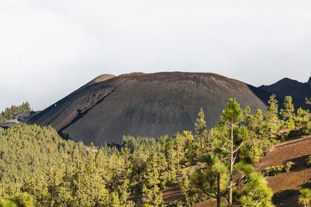 Pico Cho Marcial of the Volcan de Arafo in the Caldera Pedro Gil in Tenerife, Spain.
