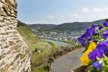 Colorful Pansies and view over the Moselle River Valley in Cochem, Germany from outside the famous castle. Stock Photo