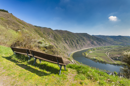 View over the Calmont vineyards and the Bremm river loop in the Moselle Valley In Spring, Germany with two benches in the foreground. Stock Photo