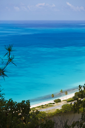 Darkwood Beach with palm trees seen from a high observation point in Antigua.