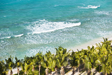 A beautiful caribbean beach with lots of palm trees and tall waves seen from a high observation point. Galley Bay, Antigua.