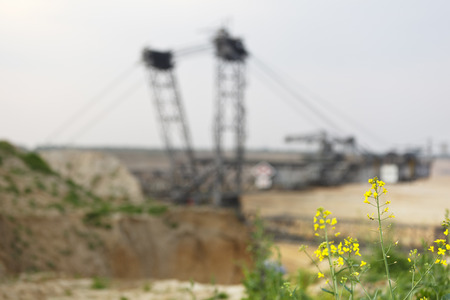 A lignite surface mine with a giant bucket-wheel excavator, one of the worlds largest moving land vehicles. Focus is on the yellow rapeseed in the foreground