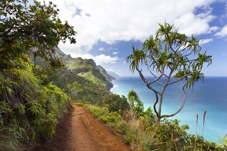 ハワイ州カウアイ島のカララウトレイルからナパリ海岸を眺めます。