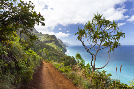View along the Na Pali Coast from the Kalalau Trail in Kauai, Hawaii. 写真素材 - 93401459