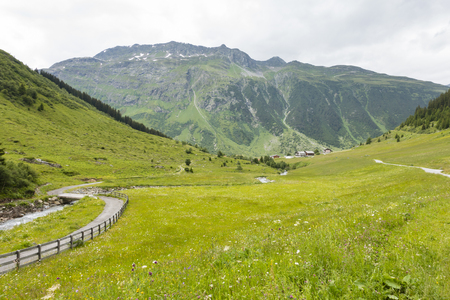 View over summer meadows in the Paznaun Valley, Austria with Galtuer in the background. Stock Photo