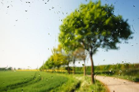 Beautiful green landscape seen through a raindrop covered window.