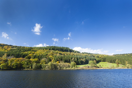 View to the shore of lake Rursee in the Eifel in Germany in fall.