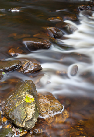 Yellow leafs in on a rock in a little stream in autumn. Long exposure shot.