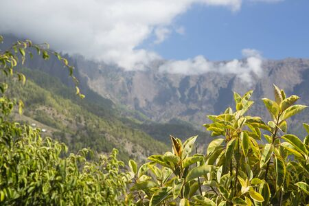View along the entrance canyon to the Caldera de Taburiente in La Palma, Spain.