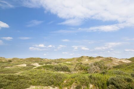 View of overgrown sand dunes in Norderney, Germany.