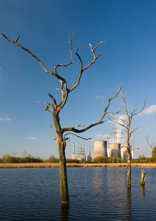 A cole power station behind some dead trees. 写真素材