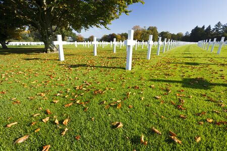 White crosses under a tree at the American military cemetery Henri-Chapelle near Aubel in Belgium, some foliage in the foreground. 写真素材