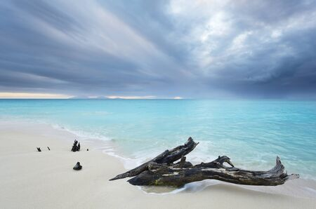 A piece of driftwood at Ffryes Beach in Antigua. Dramatic dark sky over turquoise water short before a storm.