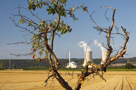 A sad looking apple tree in front of a nuclear power plant.