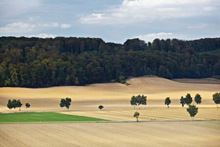 Landscape with hills, fields, roads and trees in Lower Saxony, Germany.