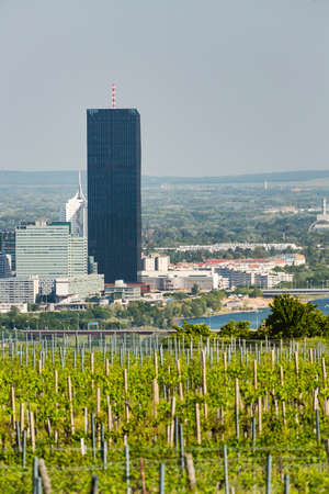 View from a vineyard hill over Vienna, Austria to the Danube river, International Center and Donaucity.