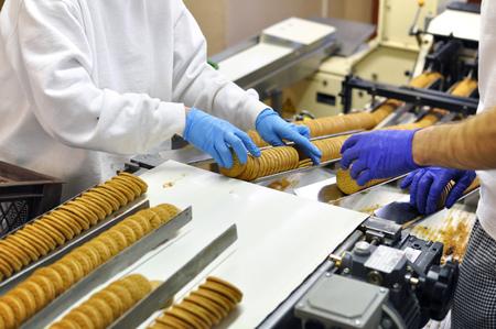 les travailleurs choisissent des cookies sur une couverture de convoyeur dans une usine - production dans l & # 39 ; industrie de la nourriture