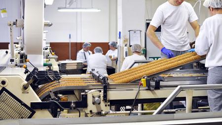労働者は工場のコンベアベルトでビスケットをソートする - 食品産業での生産