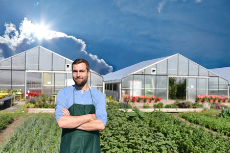farmer in agriculture cultivating vegetables - greenhouses in the background Archivio Fotografico - 106926116