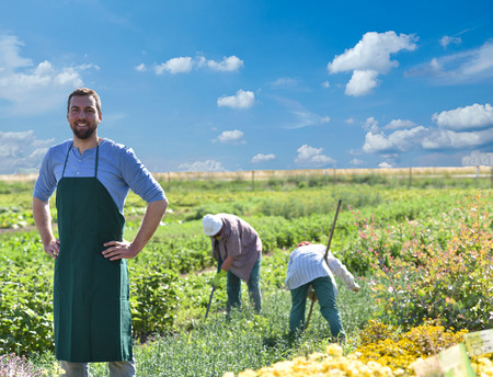 happy farmer growing and harvesting vegetables on the farm