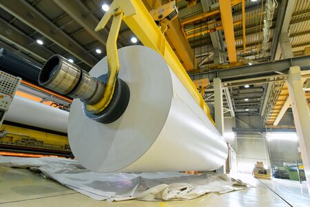 Paper mill: production of paper rolls for the printing industry - paper rolls in a factory Reklamní fotografie