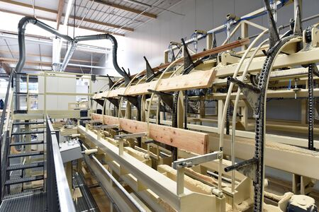 woodworking sawmill: production and processing of wooden boards in a modern industrial factory - assembly line in production