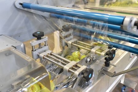 Modern packaging machine for fresh pears in a factory for food industry