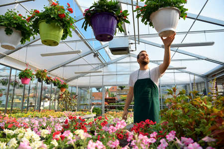 happy worker growing flowers in a greenhouse of a flower shop