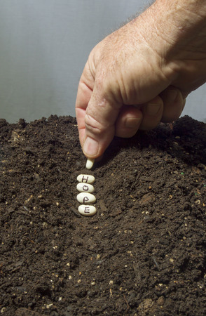 plot: Planting the seeds of hope in a garden with rich soil. Stock Photo