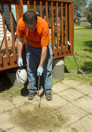 Worker spraying weed killer on a old patio for a customer. Archivio Fotografico