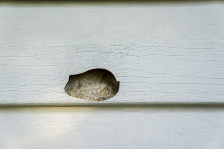 Hail and mold damage on the side of a house with vinyl siding. Foto de archivo