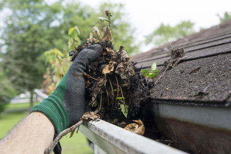 leaf: Cleaning gutters during the summer time.