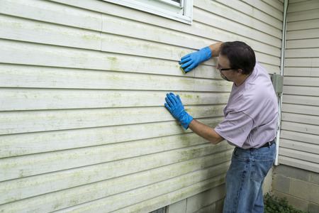 storm damage: Contractor cleaning algae and mold from vinyl siding of a customers home.