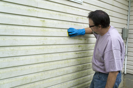 Contractor removing algae and mold from vinyl siding on a customers home.