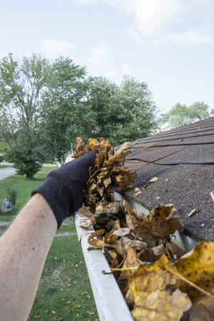 Homeowner getting dry leaves out of a gutter.