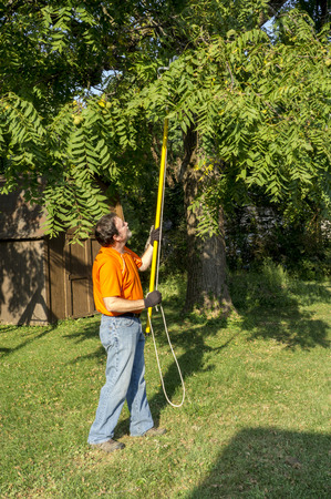 Trimming tree branches around a telephone line.
