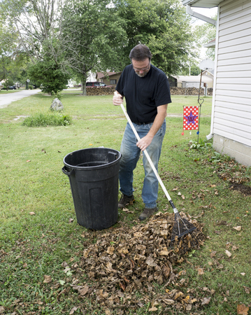front yard: homeowner raking leaves in the front yard,